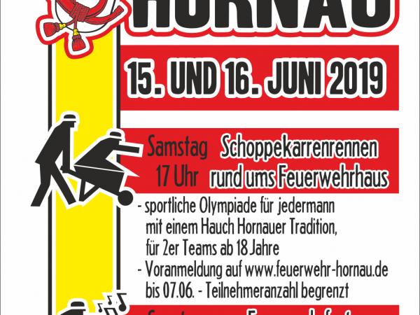 Tag der Offenen Tür + Schoppekarrenrennen in Hornau