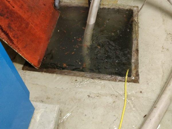 Wasserschaden / Keller unter Wasser
