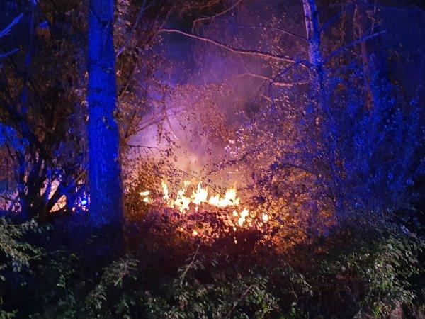 Flächen-/Wiesenbrand