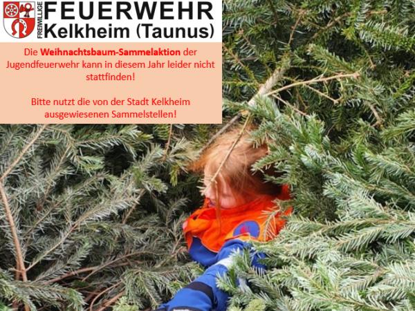 Absage Weihnachtsbaum Sammelaktion