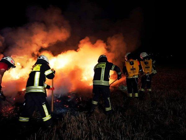 Vegetationsbrände